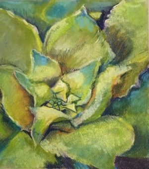 "Flower pastel 5.5 x 6.5 inches on Canson pastel paper 19""x12"" Succulent pastel painting"