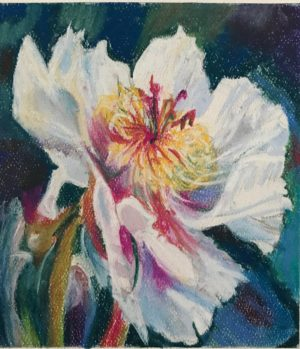 "Flower pastel 5.5 x 6.5 inches on Canson pastel paper 19""x12"" Peony pastel painting"